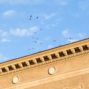 Architectural detail of Jordan Hall building with blue sky and birds flying overhead.